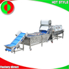 Commercial longan lychee hawthorn cherry tomatoes jujube cleaning machine air drying line fruit machine
